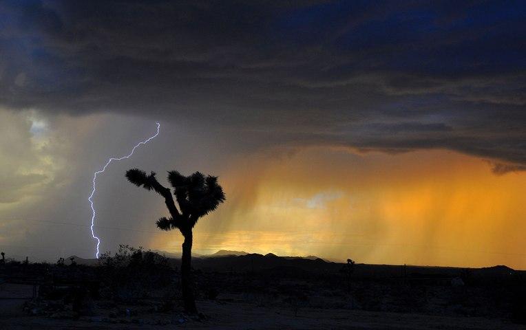 Comprendre les mécanismes des climats du passé