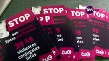 Journée internationale de lutte contre les violences faites aux femmes à Cherbourg [TéVi] 15_11_26