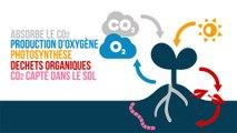 4 pour 1000, les sols agricoles pour la sécurité alimentaire et le climat