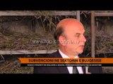 Subvencioni në sektorin e bujqësisë - Top Channel Albania - News - Lajme