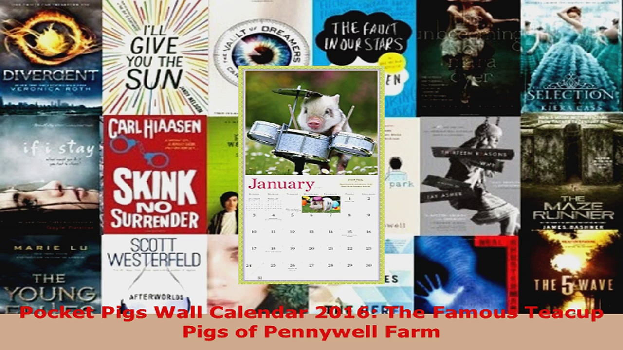 Read  Pocket Pigs Wall Calendar 2016 The Famous Teacup Pigs of Pennywell Farm PDF Free