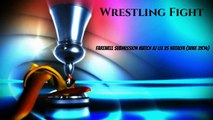 Wrestling Fight - Farewell Submission Match - Natalya vs AJ Lee (WWE 2K14)