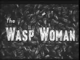 The Wasp Woman (Classic Science Fiction Movie) 1959