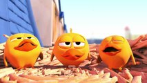 Short Animation - Pigeons - Cute animation
