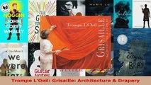 Read  Trompe LOeil Grisaille Architecture  Drapery EBooks Online