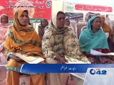 Animals Distribute in Poor People by Rana Tajamul Hussain