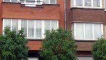 Te koop - Appartement - Anderlecht (1070) - 85m²
