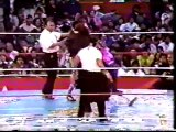 AAA 93 Rey Misterio jr, Winners and Super Calo vs Psicosis,  Picudo and Heavy Metal