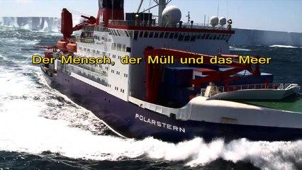 Der Mensch, der Müll und das Meer - Fragen an Dr. Melanie Bergmann vom Alfred Wegener Institut Bremerhaven