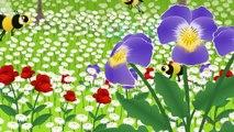 Küçük Kurbağa Küçük Kurbağa ve Çocuk Şarkıları - Edis ile Feris