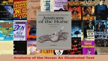 PDF Download  Anatomy of the Horse An Illustrated Text Read Online