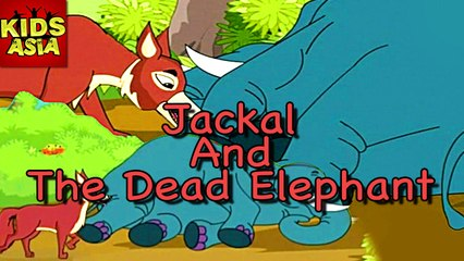 Jackal And The Dead Elephant | Kids Animated Story | Tales Of Panchatantra | Kids Asia
