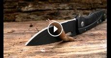 Dünyanın En Keskin Bıçağı Üzerinden Sümüklü Böcek Geçerse..
