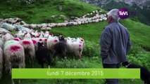 Connaissance du monde Les Pyrénées [TéVi] 15_12_04