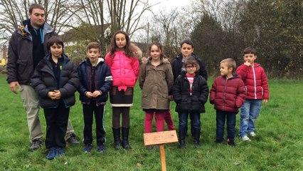 COP21 : les enfants du centre de loisirs de Chaumes-en-Brie plantent deux arbres pour le climat