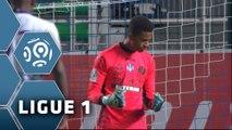 ESTAC Troyes - Toulouse FC (0-3)  - Résumé - (ESTAC-TFC) / 2015-16