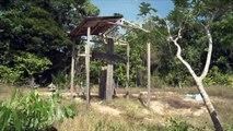 Amazônia Repórter: Nazista é sepultado em cemitério na Amazônia (4/1/2014)