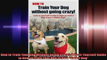 How to Train Your Dog Without Going Crazy A DoItYourself Guide to How to Train Your