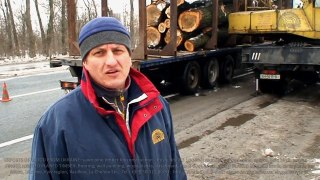 Processing logs of poplar aspen Ukraine Production sawn timb
