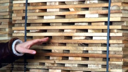 Exports of poplar & aspen sawn timber (with antiseptic) from Ukraine to: Middle East, Egypt, Pakistan, China, Asia