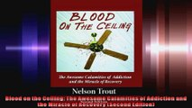 Blood on the Ceiling The Awesome Calamities of Addiction and the Miracle of Recovery