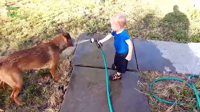 Dogs and Babies Playing with Hoses Compilation 2015 [NEW HD]