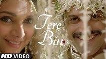 Tere Bin | Video Song | Wazir | Farhan Akhtar, Aditi Rao Hydari | Sonu Nigam, Shreya Ghoshal