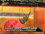 10 Jari Abbas e Ghazi l S Zaheer Abbas & S Qasim Abbas l Jari Abbas e Ghazi (as) 1437 Hijri Nohay