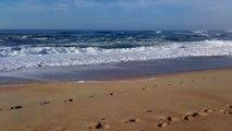 ocean atlantique plage de Hossegor