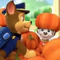 Paw Patrol Episodes Eggs Cartoon Full Games 2015 | Paw Patrol Cakes Christmas Song Movies HD