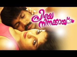 Malayalam hot movie 2015 full Movie 18+ | Priye Ninakkay | Latest Romantic Movies