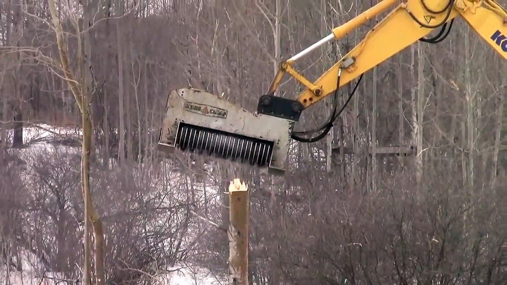 Пожиратель деревьев! Чудо техника в России !