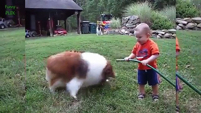 Most Funny and Cute Baby Videos of All Time [NEW HD]