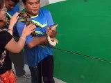 Elle veut faire un bisou à un serpent et elle va le regretter