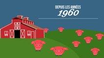 Ces chiffres vont vous faire prendre conscience de l'impact néfaste de notre surconsommation de viande - DES CHIFFRES ET LE MONDE