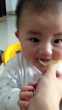 very funny baby tasted lemon very funny