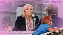 Les chats rattrapent le temps de parole FN - Le Grand Journal - Canal +