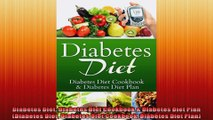 Diabetes Diet Diabetes Diet Cookbook  Diabetes Diet Plan Diabetes Diet Diabetes Diet