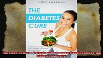 The Diabetes Cure  A simple guide to understanding and curing diabetes naturally