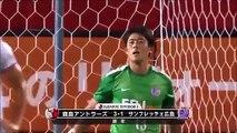Hamit Altıntop golü Japonya'da , 2016