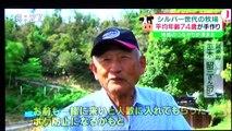 里山と放牧 斉藤晶牧場