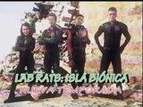 Promo 2 Lab Rats: Isla Biónica (Temporada 4 Julio 2015) en Disney XD
