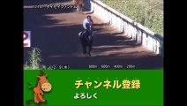 第8回 カペラステークス(GIII) タイセイファントム調教動画