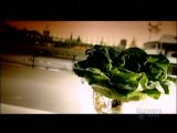 How Its Made - 069 Hydroponic Lettuce