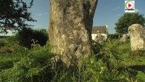 Erdeven: Les Menhirs libres de Kerzerho - ETEL Bretagne Télé