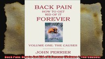 Back Pain How to Get Rid of It Forever Volume 1 The Causes