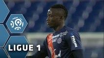 Montpellier Hérault SC - EA Guingamp (2-1)  - Résumé - (MHSC-EAG) / 2015-16