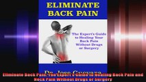 Eliminate Back Pain The Experts Guide to Healing Back Pain and Neck Pain Without Drugs
