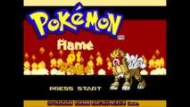 Pokemon Flame of Rage