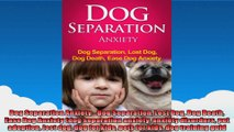 Dog Separation Anxiety  Dog Separation Lost Dog Dog Death Ease Dog Anxiety dog